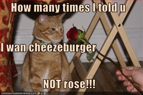How many times I told u I wan cheezeburger NOT rose!!!
