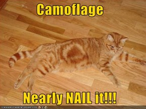 Camoflage  Nearly NAIL it!!!