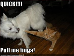 QUICK!!!!  Pull me finga!