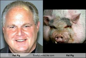 Fat Pig Totally Looks Like Fat Pig