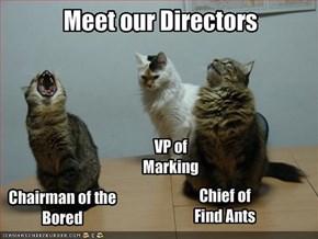 Meet our Directors
