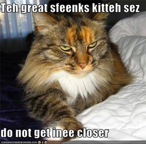 Teh great sfeenks kitteh sez   do not get inee closer