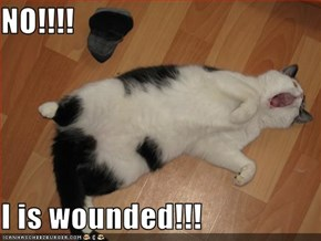 NO!!!!  I is wounded!!!