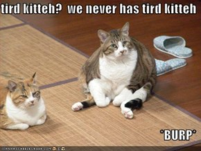 tird kitteh?  we never has tird kitteh  *BURP*