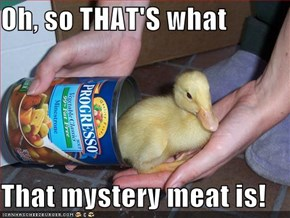 Oh, so THAT'S what  That mystery meat is!