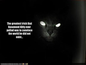 The greatest trick that Basement Kitty ever pulled was to convince the world he did not exist...