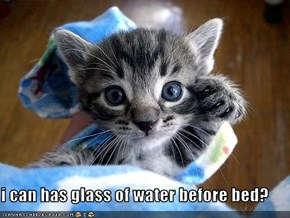 i can has glass of water before bed?