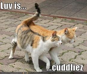 Luv is...  ...cuddliez