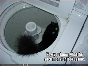 Now you know what the sock monster lookes like.