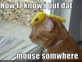 Now Iz know i put dat                                            mouse somwhere