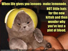 When life gives you lemons- make lemonade,