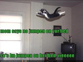 mom says no jumpen on yur bed so's Im jumpen on her bed, weeeee