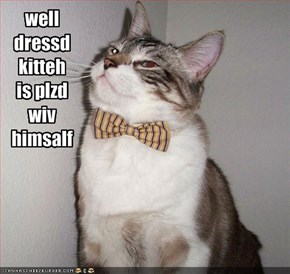well dressd kitteh is plzd wiv himsalf