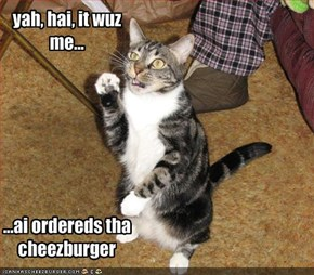 yah, hai, it wuz me...