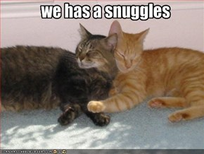 we has a snuggles