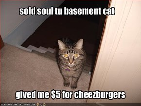 sold soul tu basement cat