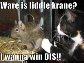Ware is liddle krane?  I wanna win DIS!!