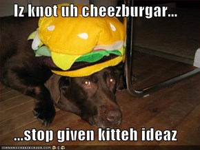 Iz knot uh cheezburgar...  ...stop given kitteh ideaz