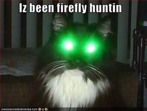 Iz been firefly huntin