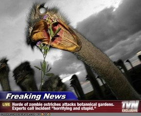 "Freaking News - Horde of zombie ostriches attacks botannical gardens. Experts call incident ""horrifying and stupid."""