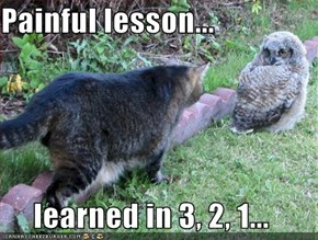 Painful lesson...  learned in 3, 2, 1...
