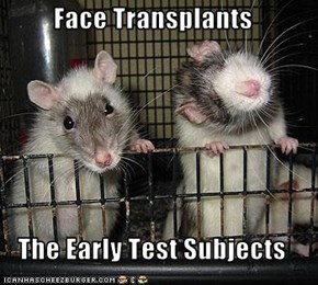 Face Transplants  The Early Test Subjects