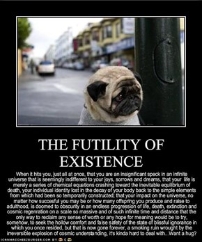 THE FUTILITY OF EXISTENCE