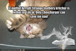 Iz meltin! Arrrgh! Strange feathery kriichur is lethal to   Lolcal. Only cheezburger can
