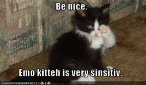 Be nice.  Emo kitteh is very sinsitiv.