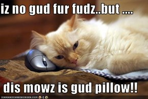 iz no gud fur fudz..but ....    dis mowz is gud pillow!!