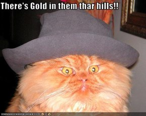 There's Gold in them thar hills!!