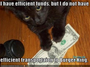 I have efficient funds, but I do not have  efficient transportaion to Burger King.