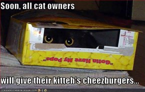 Soon, all cat owners  will give their kitteh's cheezburgers...