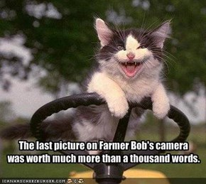 The last picture on Farmer Bob's camera