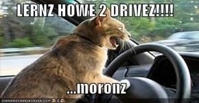 LERNZ HOWE 2 DRIVEZ!!!!  ...moronz