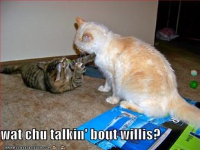 wat chu talkin' bout willis?