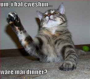 um, i haf cweshun...  ware mai dinner?