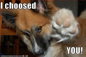 I choosed  YOU!