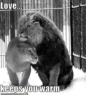 Love...  keeps you warm