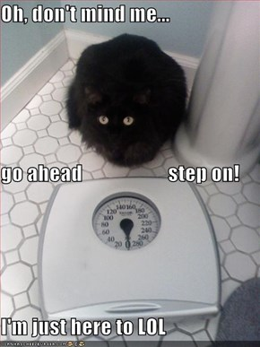 Oh, don't mind me... go ahead                     step on! I'm just here to LOL