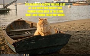 IT'S EASIER TO ACCEPT FEELING LOST AT SEA WHEN YOU KNOW YOUR FRIENDS HAVE BEEN IN THE SAME BOAT, AND FOUND THEIR WAY HOME.