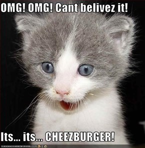 OMG! OMG! Cant belivez it!  Its... its... CHEEZBURGER!