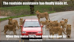 The roadside assistance has finally made it!..