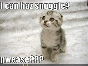 I can haz snuggle?  pwease???