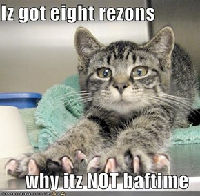 Iz got eight rezons  why itz NOT baftime