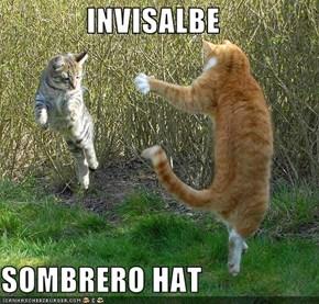 INVISALBE  SOMBRERO HAT