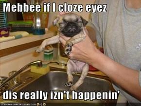 Mebbee if I cloze eyez   dis really izn't happenin'