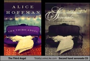 The Third Angel Totally Looks Like Second hand serenade CD