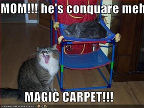 MOM!!! he's conquare meh  MAGIC CARPET!!!