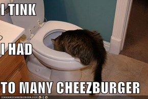 I TINK I HAD TO MANY CHEEZBURGER